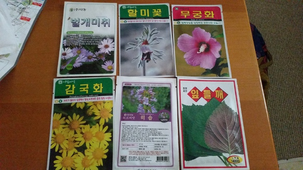 Korean seeds