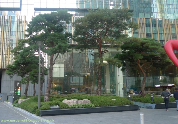 trees in front of buildings Seoul